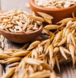 Применение овса для снижения холестерина при повышенном уровне – обзор исследований