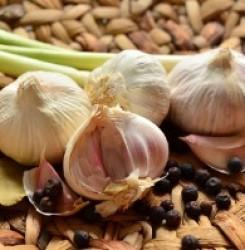 Снижает ли чеснок повышенный уровень холестерина в крови — мнение ученых и врачей