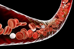 Как повысить уровень гемоглобина народными средствами