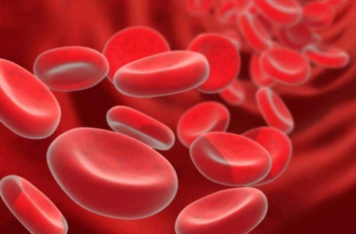 Как поднять гемоглобин за 2 дня